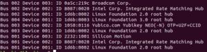 Yubikey NEO lsusb 300x76 - Paramétrer la Yubikey NEO avec le static password